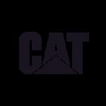 cat_logo_resete